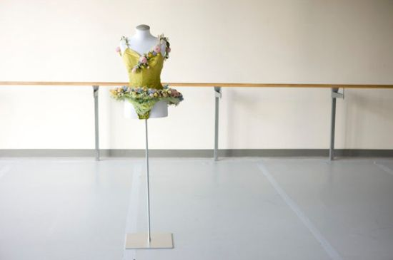 exposiciones  The National Ballet of Canada & The Tutu Project