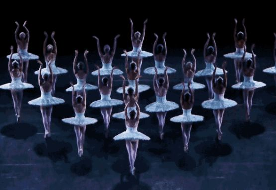 clasica  A YEAR INSIDE THE AUSTRALIAN BALLET THE BODY OF THE BALLET