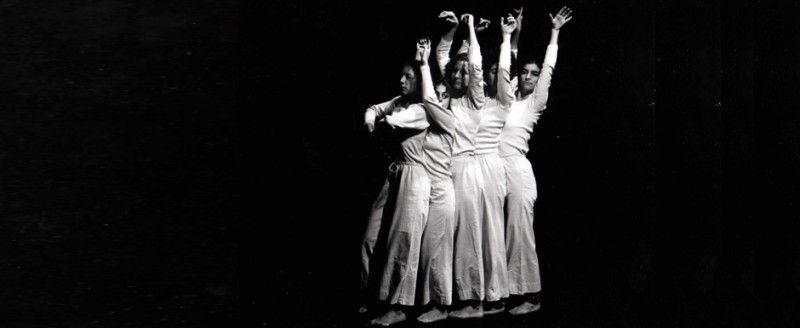 Trisha Brown Dance Company   IN PLAIN SITE