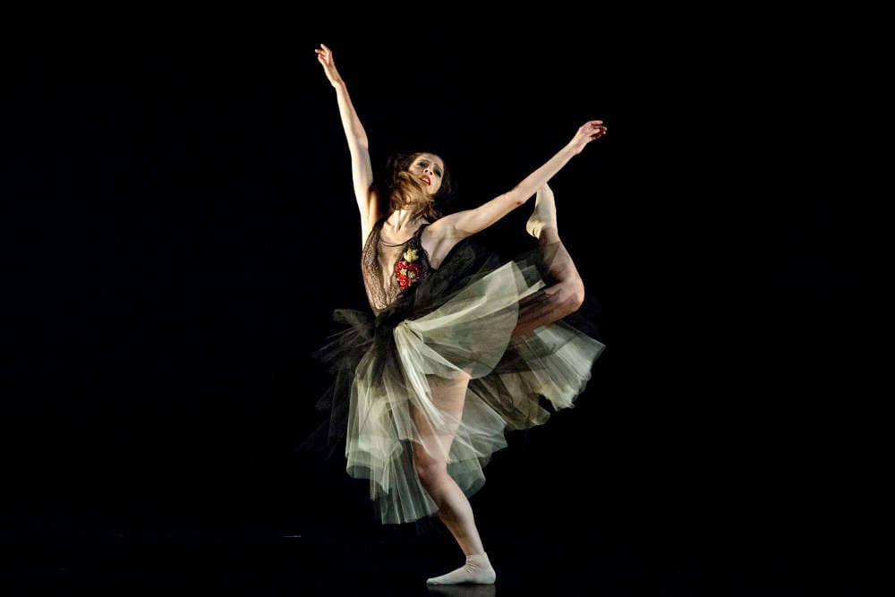 Compañía Danizza - Viaje al centro de la danza