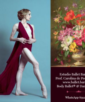 Studio Ballet Barcelona® Clases online de ballet clásico